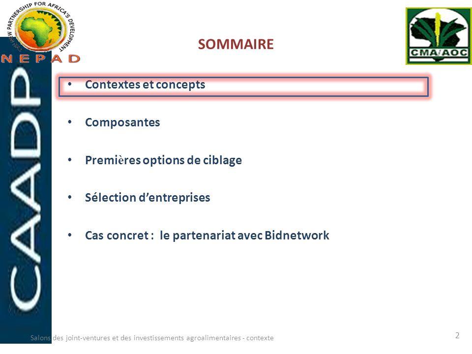 SOMMAIRE Contextes et concepts Composantes Premi è res options de ciblage Sélection dentreprises Cas concret : le partenariat avec Bidnetwork Salons d