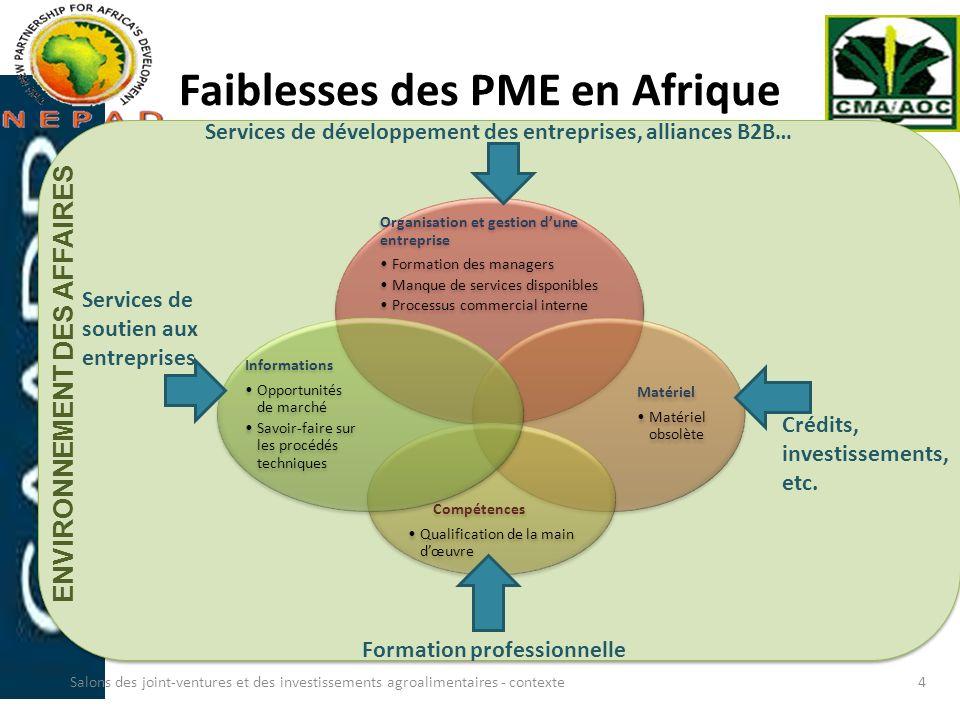 Faiblesses des PME en Afrique Organisation et gestion dune entreprise Formation des managers Manque de services disponibles Processus commercial inter