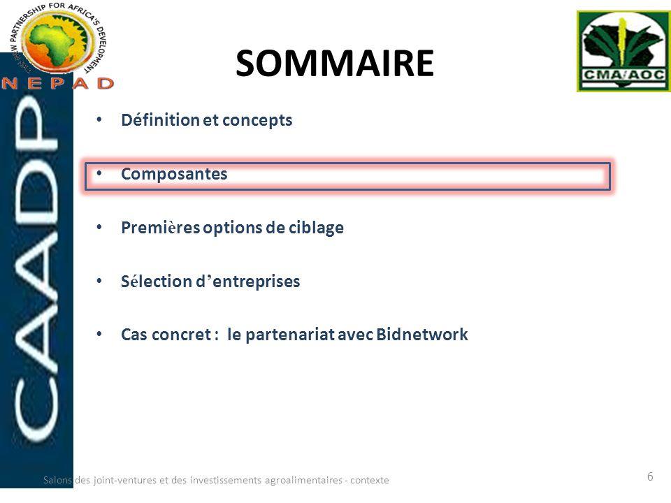 SOMMAIRE Définition et concepts Composantes Premi è res options de ciblage S é lection d entreprises Cas concret : le partenariat avec Bidnetwork Salo