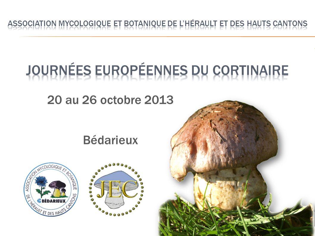 20 au 26 octobre 2013 Bédarieux