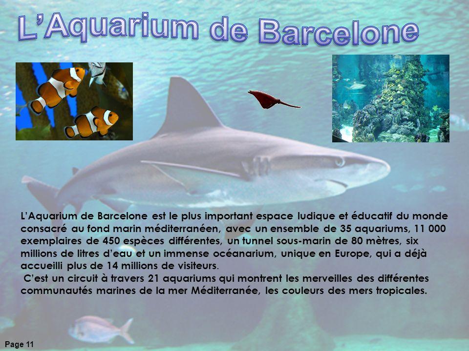 LAquarium de Barcelone est le plus important espace ludique et éducatif du monde consacré au fond marin méditerranéen, avec un ensemble de 35 aquarium
