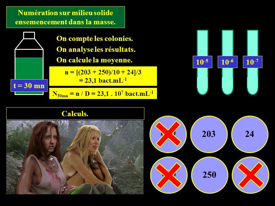 Numération sur milieu solide ensemencement dans la masse. Calculs. 1500 20324 trop 25019 On compte les colonies. On analyse les résultats. On calcule
