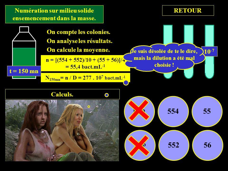 Numération sur milieu solide ensemencement dans la masse. Calculs. trop 55455 trop 55256 On compte les colonies. On analyse les résultats. On calcule