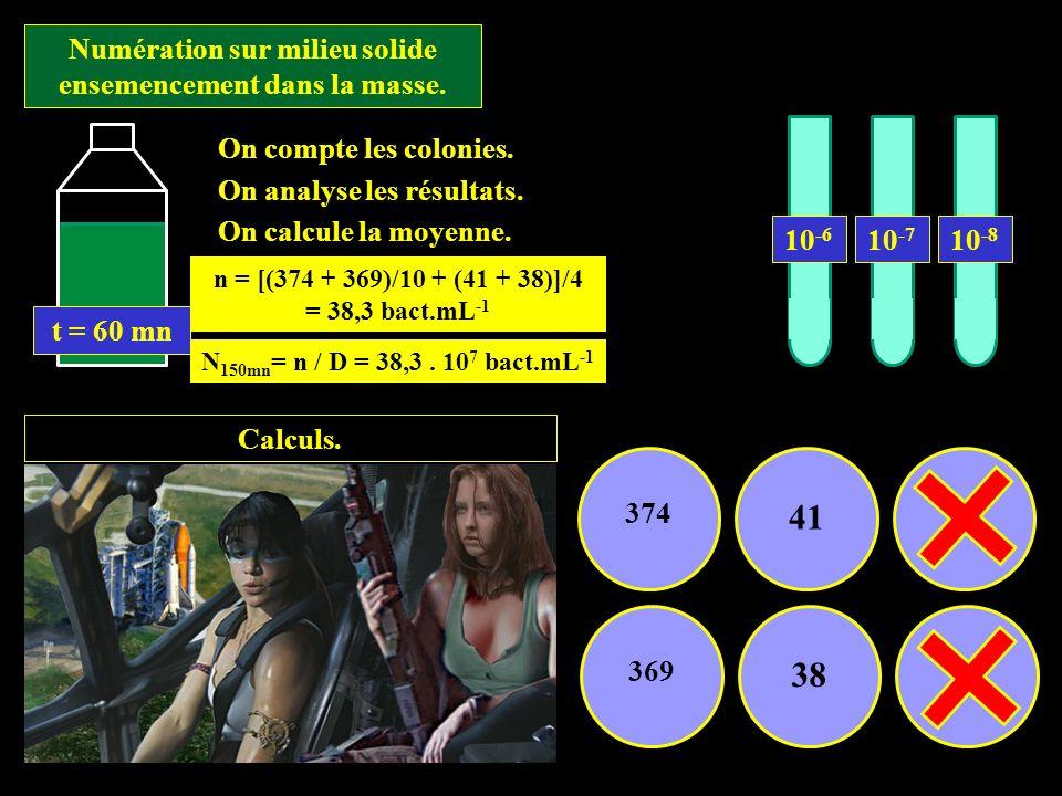 Numération sur milieu solide ensemencement dans la masse. Calculs. 374 415 369 385 On compte les colonies. On analyse les résultats. On calcule la moy