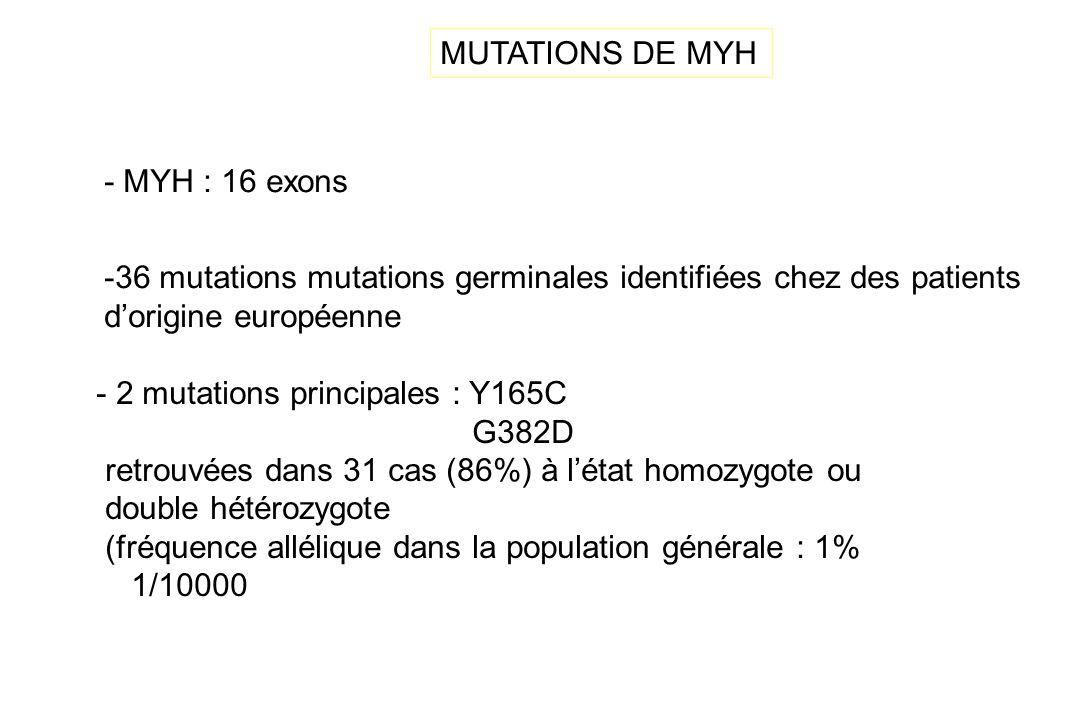 MUTATIONS DE MYH - MYH : 16 exons - 2 mutations principales : Y165C G382D retrouvées dans 31 cas (86%) à létat homozygote ou double hétérozygote (fréq