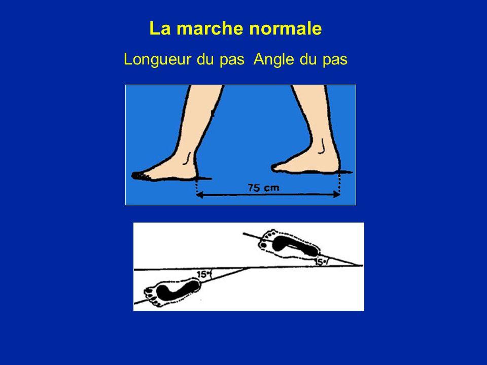 La marche normale Longueur du pas Angle du pas