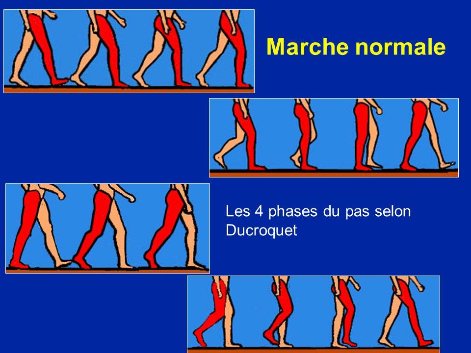 Marche normale Les 4 phases du pas selon Ducroquet