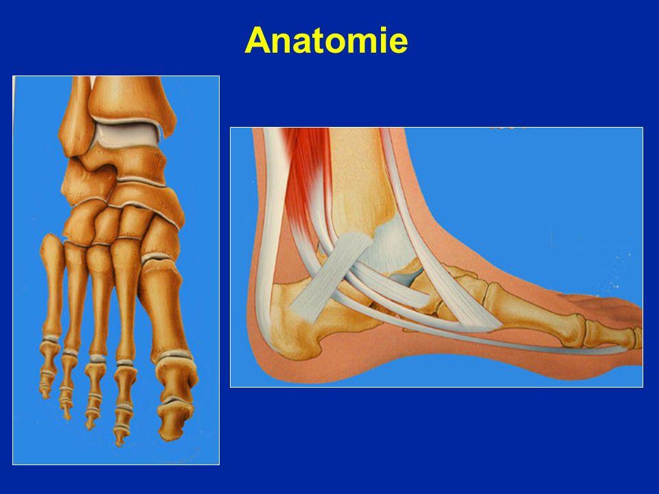 Le traitement chirurgical est exceptionnel Stabilisation provisoire astragalo-calcanéenne par vis dite «opération du cavalier » (Judet)