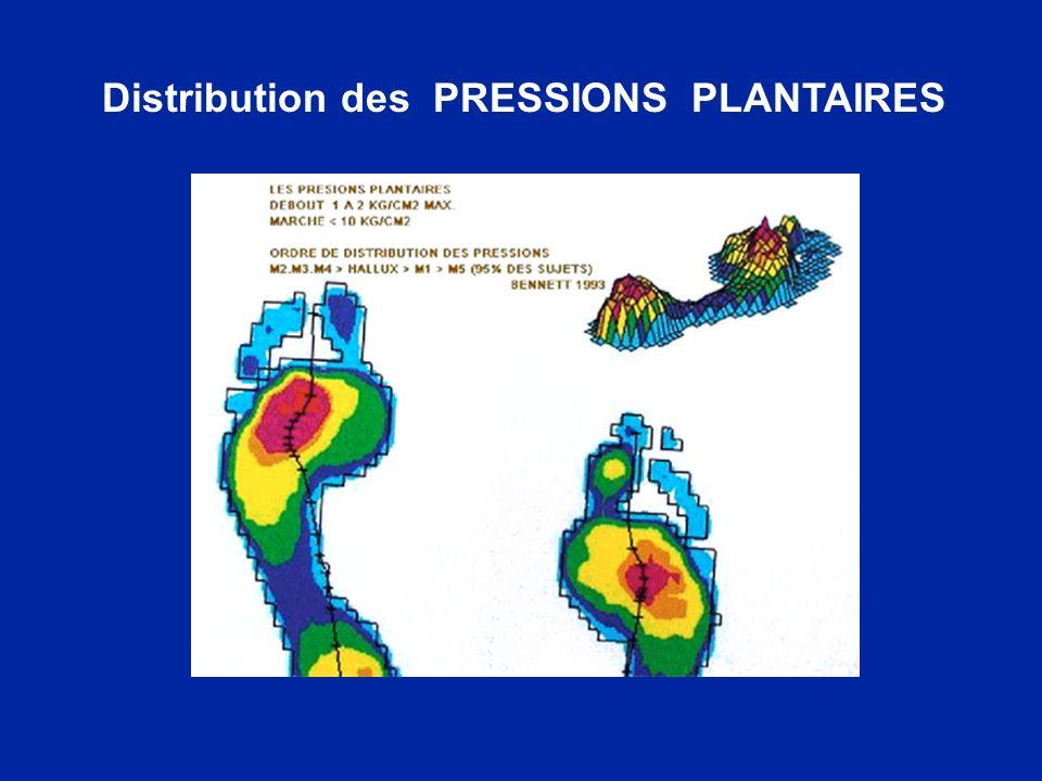 Distribution des PRESSIONS PLANTAIRES
