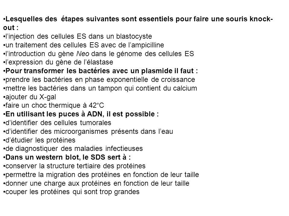 Lesquelles des étapes suivantes sont essentiels pour faire une souris knock- out : linjection des cellules ES dans un blastocyste un traitement des ce