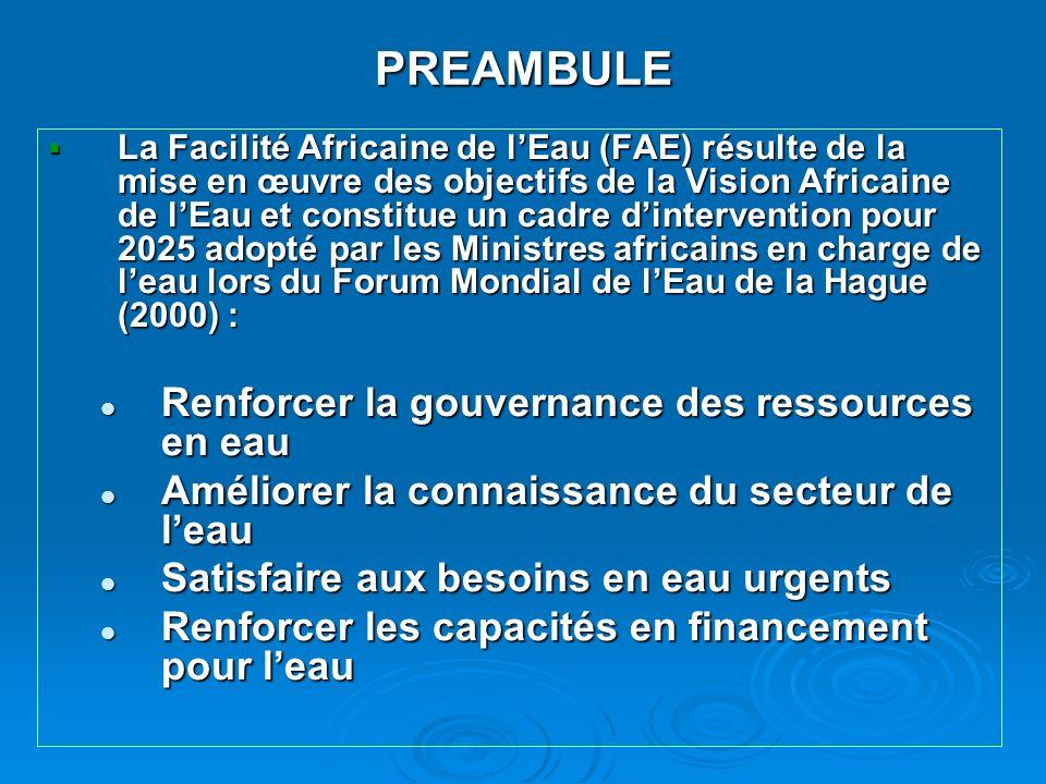PREAMBULE La Facilité Africaine de lEau (FAE) résulte de la mise en œuvre des objectifs de la Vision Africaine de lEau et constitue un cadre dinterven