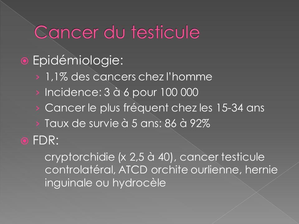 Epidémiologie: 1,1% des cancers chez lhomme Incidence: 3 à 6 pour 100 000 Cancer le plus fréquent chez les 15-34 ans Taux de survie à 5 ans: 86 à 92%