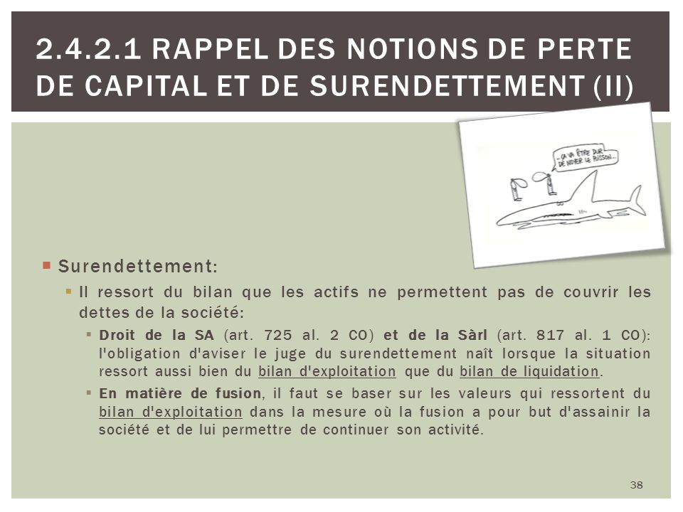 38 2.4.2.1 RAPPEL DES NOTIONS DE PERTE DE CAPITAL ET DE SURENDETTEMENT (II) Surendettement: Il ressort du bilan que les actifs ne permettent pas de co