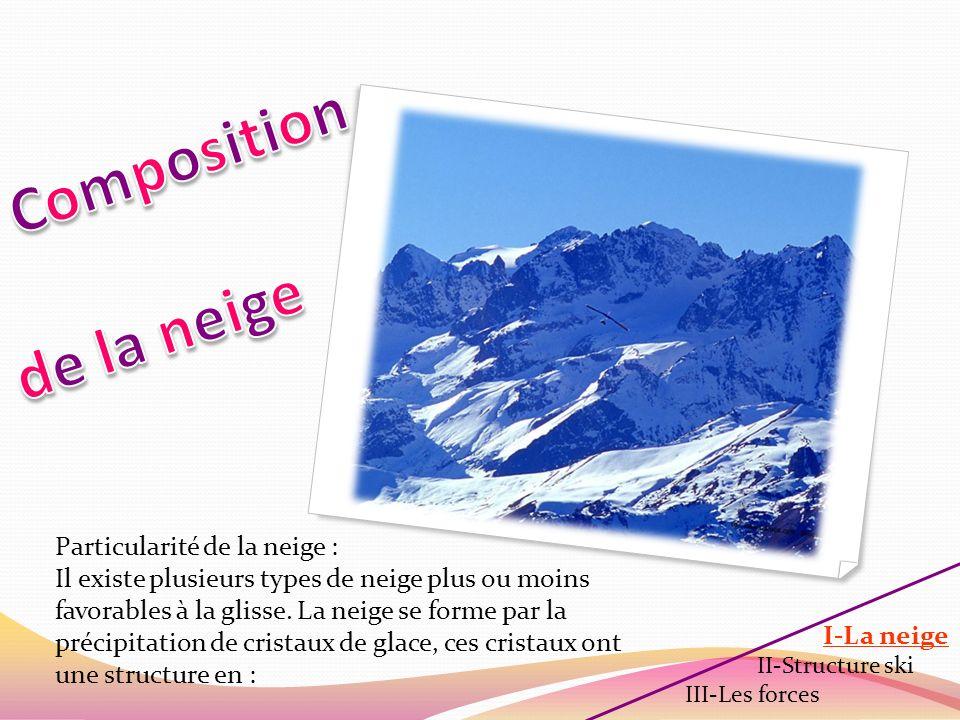 Les différents cristaux I-La neige II-Structure ski III-Les forces Lhumidité favorise lapparition de cristaux de glace qui regroupés forment des flocons.