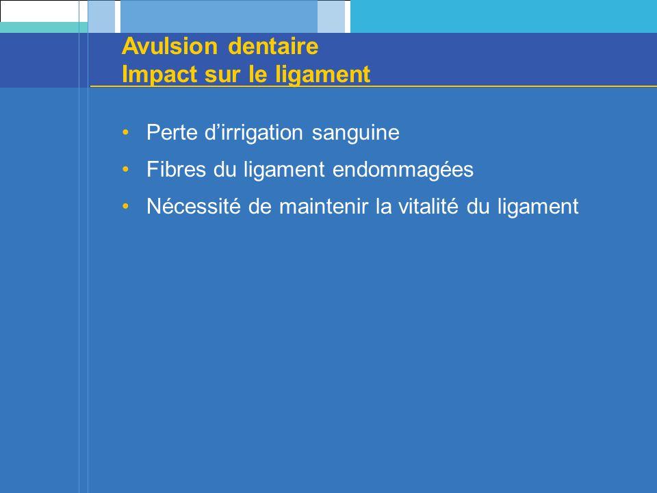 Avulsion dentaire Impact sur le ligament Perte dirrigation sanguine Fibres du ligament endommagées Nécessité de maintenir la vitalité du ligament