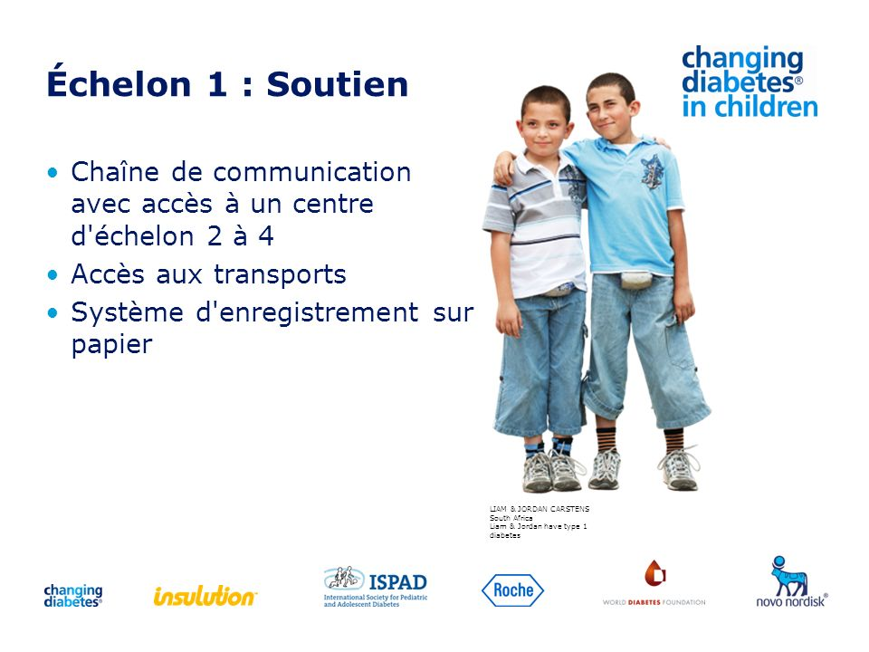 Échelon 1 : Soutien Chaîne de communication avec accès à un centre d'échelon 2 à 4 Accès aux transports Système d'enregistrement sur papier LIAM & JOR