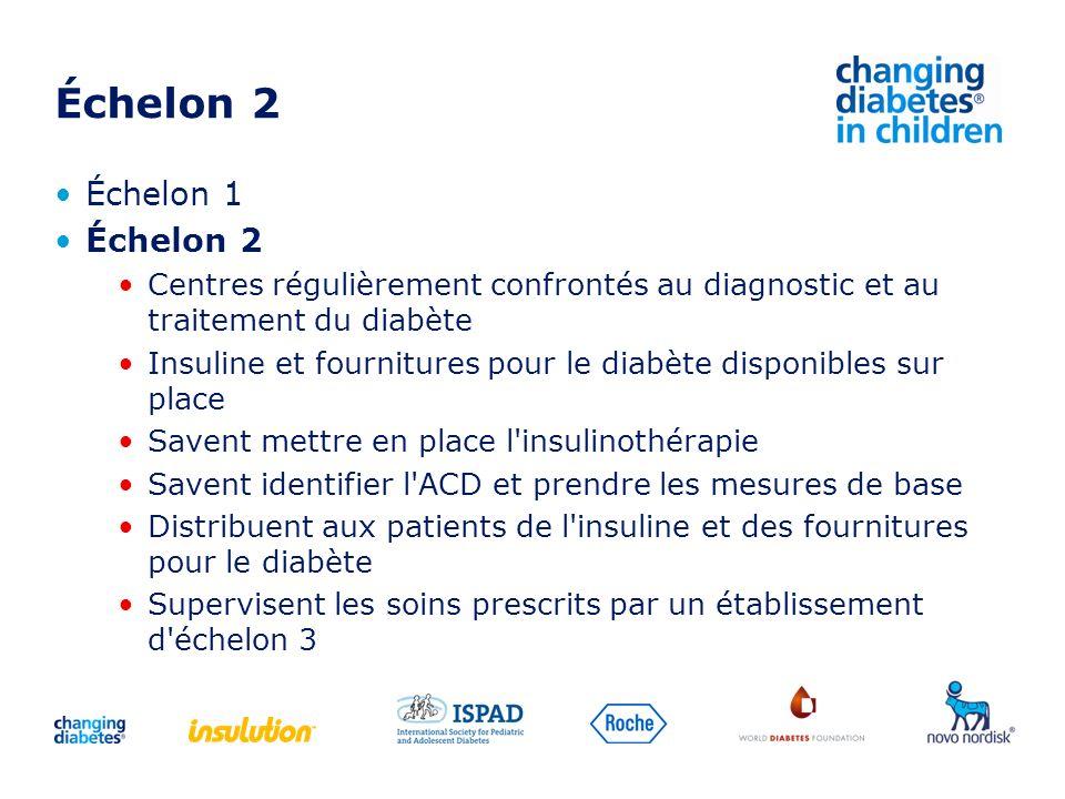 Échelon 2 Échelon 1 Échelon 2 Centres régulièrement confrontés au diagnostic et au traitement du diabète Insuline et fournitures pour le diabète dispo