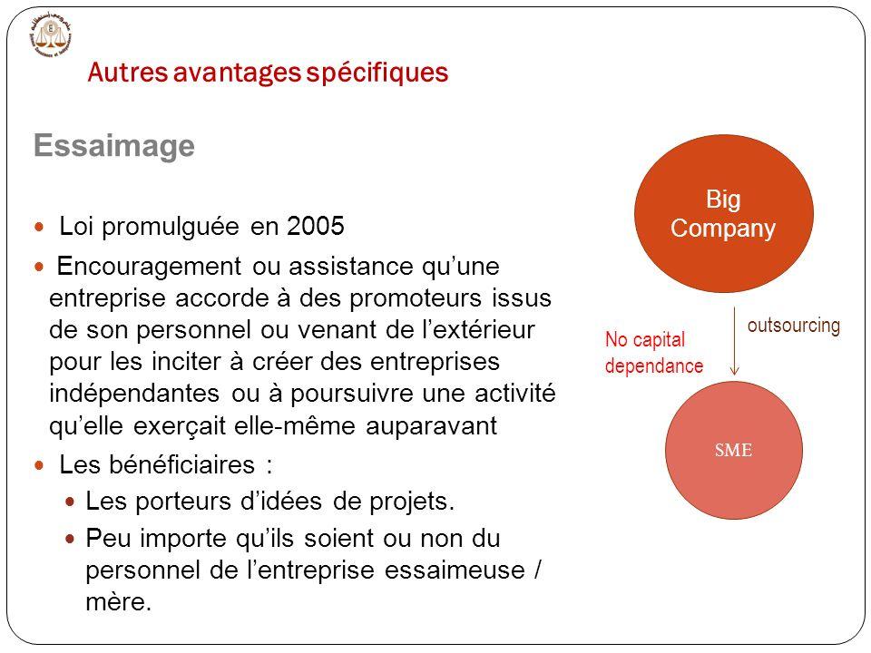 Essaimage Loi promulguée en 2005 Encouragement ou assistance quune entreprise accorde à des promoteurs issus de son personnel ou venant de lextérieur