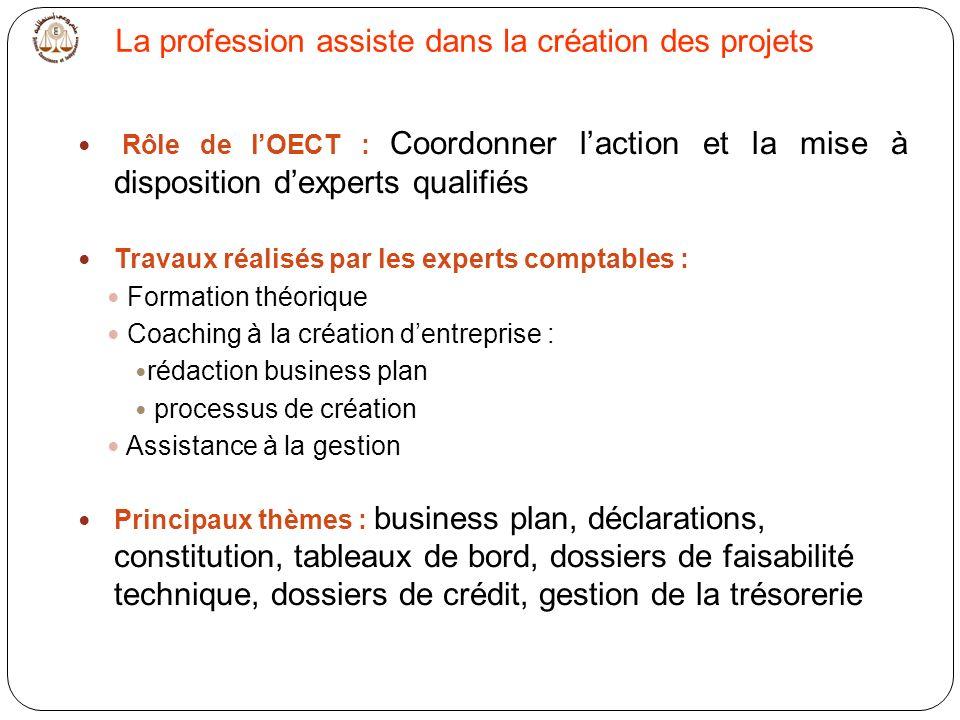 La profession assiste dans la création des projets Rôle de lOECT : Coordonner laction et la mise à disposition dexperts qualifiés Travaux réalisés par