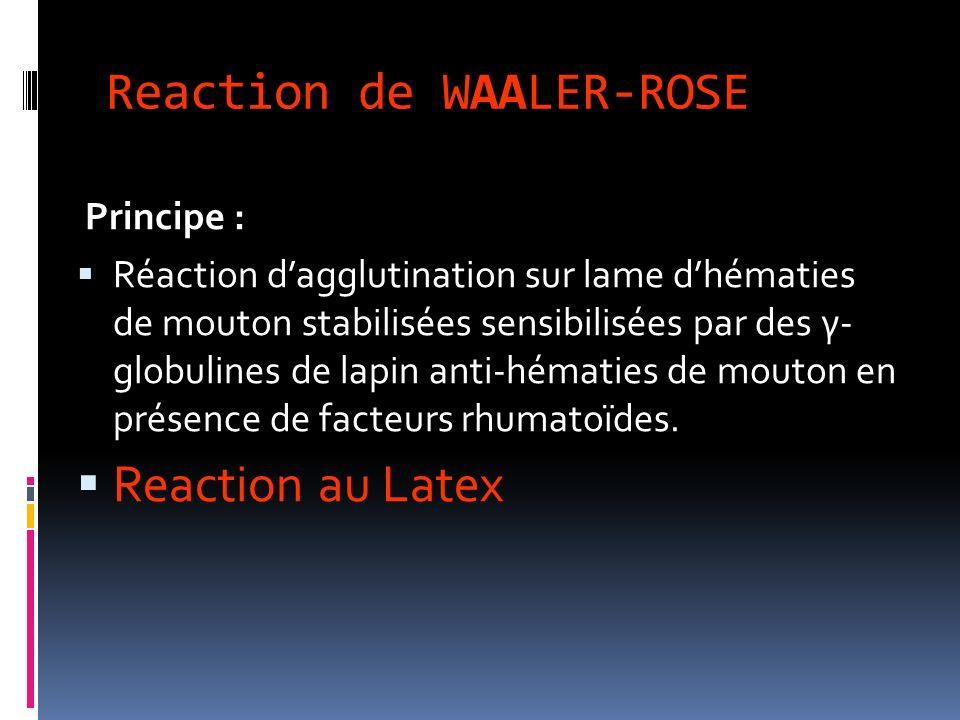 Reaction de WAALER-ROSE Principe : Réaction dagglutination sur lame dhématies de mouton stabilisées sensibilisées par des γ- globulines de lapin anti-hématies de mouton en présence de facteurs rhumatoïdes.