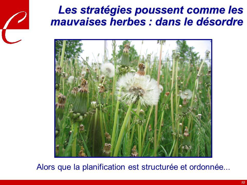 10 Les stratégies poussent comme les mauvaises herbes : dans le désordre Alors que la planification est structurée et ordonnée...