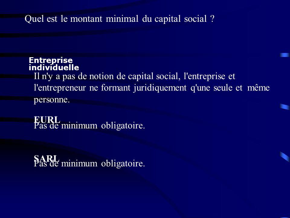 Entreprise individuelle Il n'y a pas de notion de capital social, l'entreprise et l'entrepreneur ne formant juridiquement q'une seule et même personne