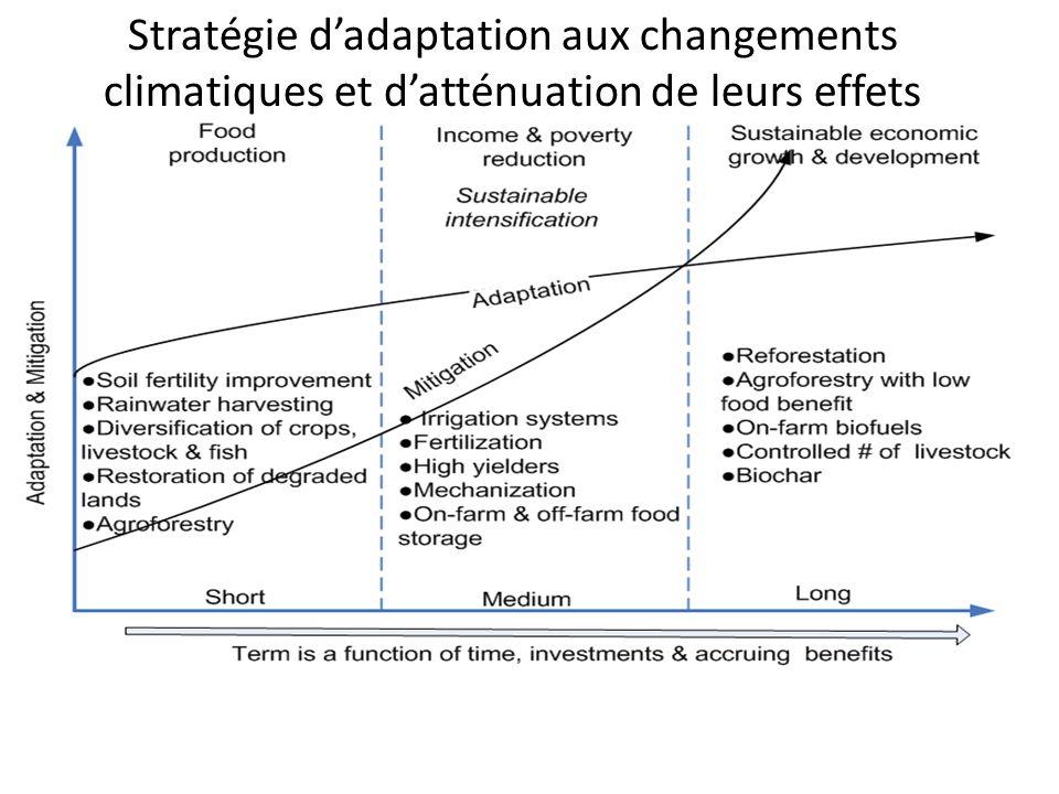 Stratégie dadaptation aux changements climatiques et datténuation de leurs effets