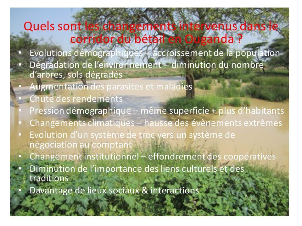 Lagroforesterie & le reboisement améliorent labsorption des GES et latténuation Lagroforesterie détient un énorme potentiel de séquestration du carbone (par ex., les systèmes agroforestiers de plantations de cacao dans des conditions humides stockent 565 tonnes de CO 2 eq par hectare) (Rice & Greenberg, 2000).