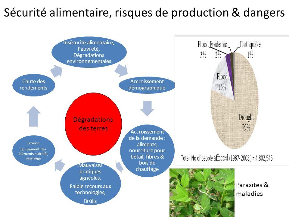 Sécurité alimentaire, risques de production & dangers Insécurité alimentaire, Pauvreté, Dégradations environnementales Accroissement démographique Acc