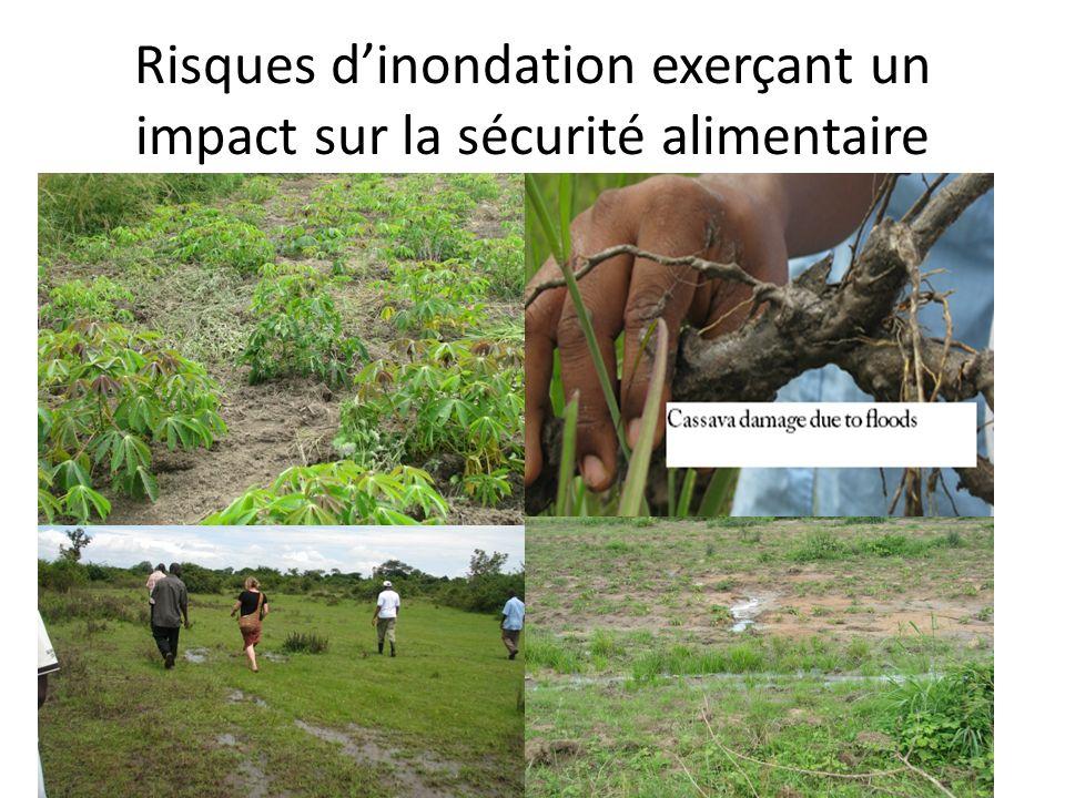Risques dinondation exerçant un impact sur la sécurité alimentaire
