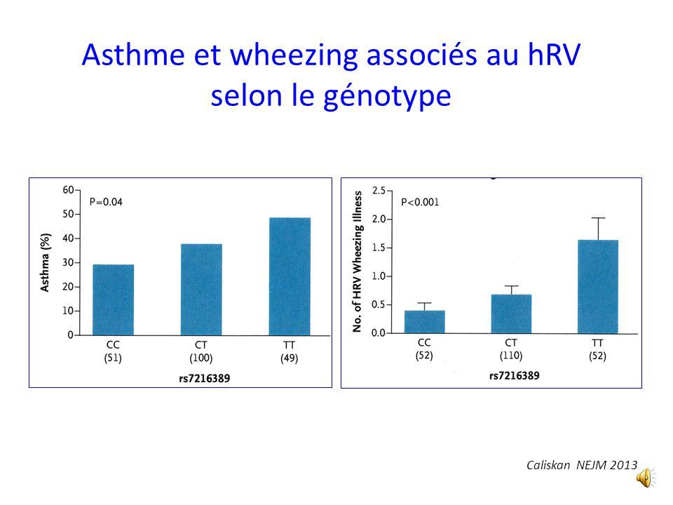 Rhinovirus et risque génétique Polymorphisme au niveau de 17q21 associé à lasthme à début pédiatrique Ces polymorphismes sont associés à lexpression d