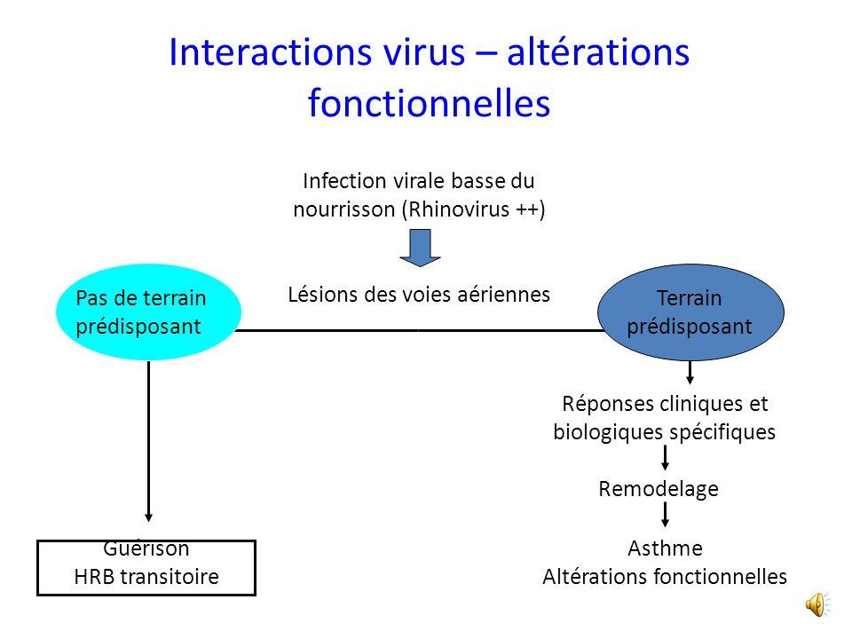 Interactions virus – altérations fonctionnelles Infection virale basse du nourrisson (Rhinovirus ++) Lésions des voies aériennes Remodelage Asthme Altérations fonctionnelles Réponses cliniques et biologiques spécifiques Terrain prédisposant Guérison HRB transitoire Pas de terrain prédisposant