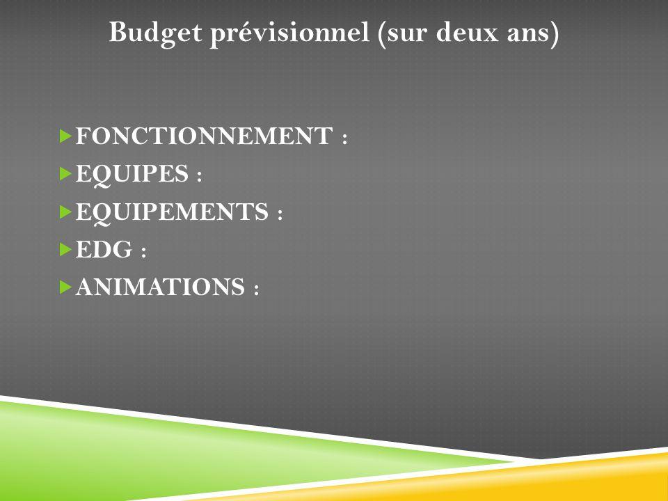 Budget prévisionnel (sur deux ans) FONCTIONNEMENT : EQUIPES : EQUIPEMENTS : EDG : ANIMATIONS :