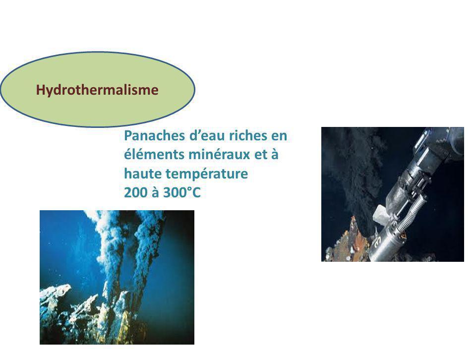 Hydrothermalisme Panaches deau riches en éléments minéraux et à haute température 200 à 300°C