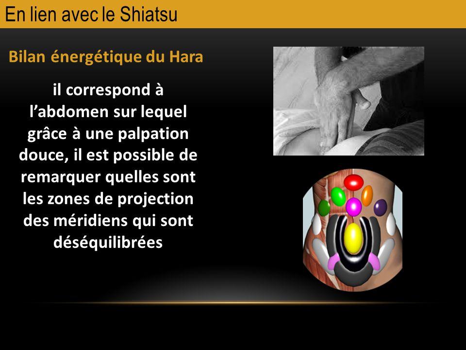 En lien avec le Shiatsu Bilan énergétique du Hara il correspond à labdomen sur lequel grâce à une palpation douce, il est possible de remarquer quelle