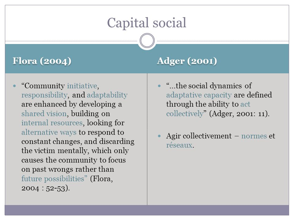 Flora (2004) Adger (2001) Community initiative, responsibility, and adaptability are enhanced by developing a shared vision, building on internal reso