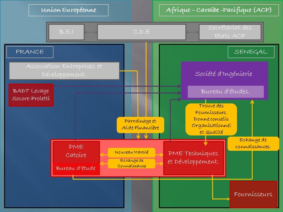 Union EuropéenneAfrique – Caraïbe -Pacifique (ACP) C.D.E Secrétariat des Etats ACP B.E.I SENEGALFRANCE Association Entreprises et Développement.
