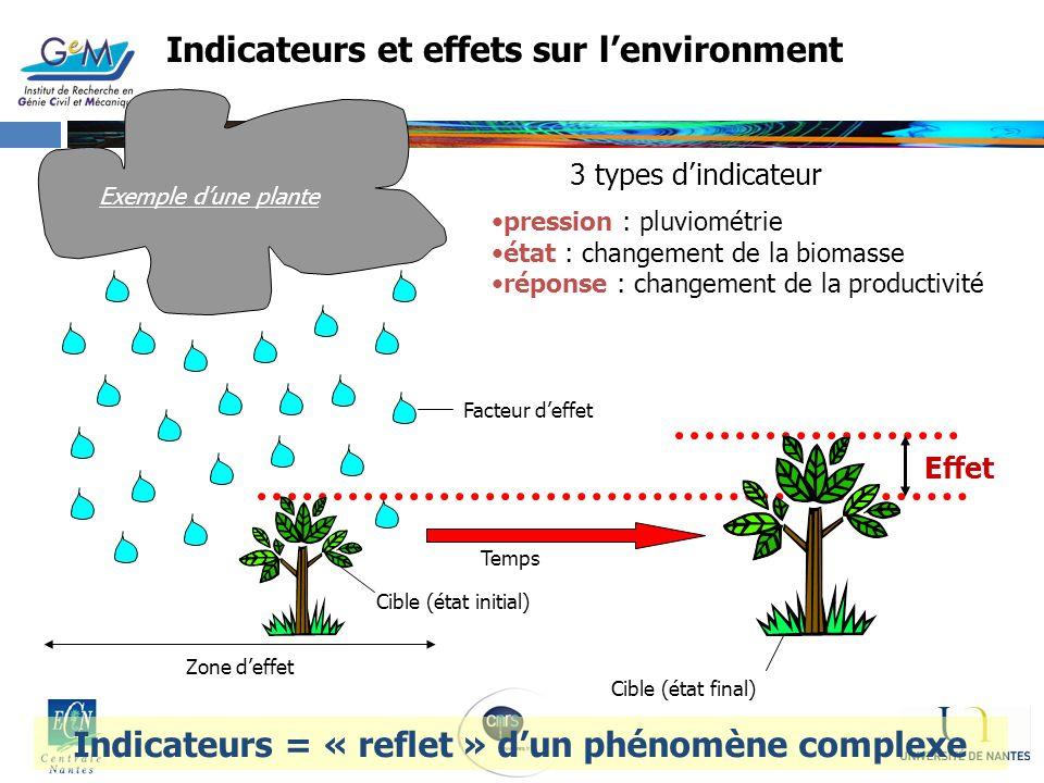 Indicateurs et effets sur lenvironment Facteur deffet Effet Zone deffet Cible (état initial) Temps Cible (état final) pression : pluviométrie état : c