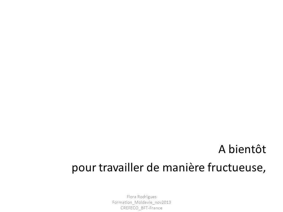 A bientôt pour travailler de manière fructueuse, Flora Rodrigues Formation_Moldavie_nov2013 CREFECO_BFT-France