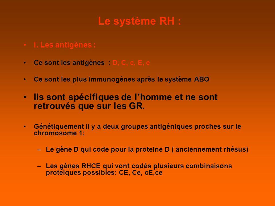 Le système RH : I.