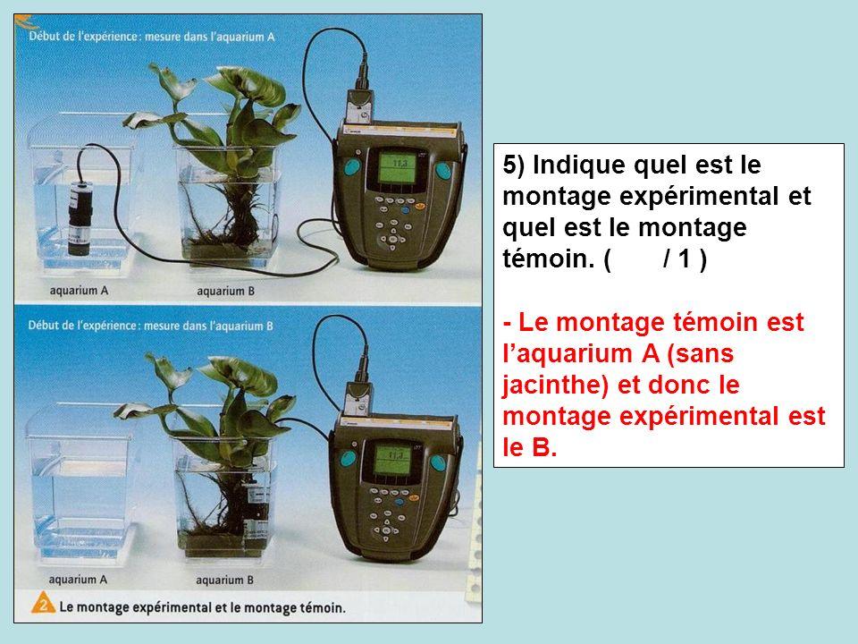 5) Indique quel est le montage expérimental et quel est le montage témoin. ( / 1 ) - Le montage témoin est laquarium A (sans jacinthe) et donc le mont