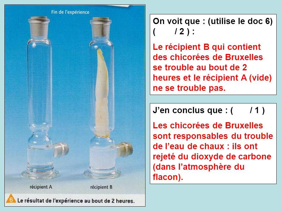 On voit que : (utilise le doc 6) ( / 2 ) : Le récipient B qui contient des chicorées de Bruxelles se trouble au bout de 2 heures et le récipient A (vi