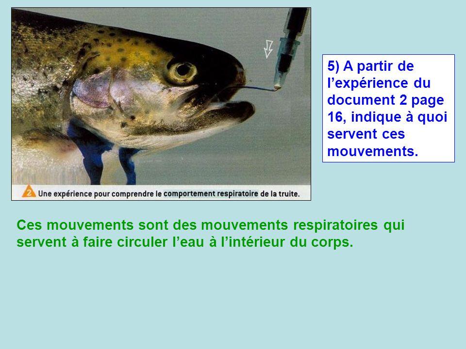 5) A partir de lexpérience du document 2 page 16, indique à quoi servent ces mouvements. Ces mouvements sont des mouvements respiratoires qui servent