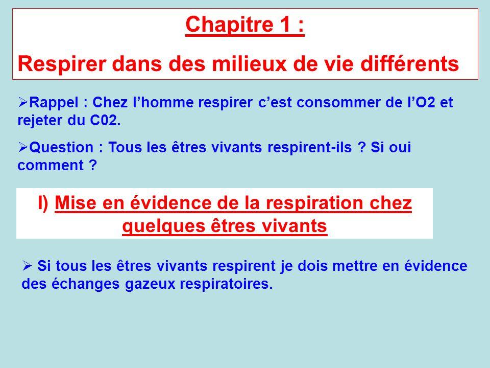 Chapitre 1 : Respirer dans des milieux de vie différents Rappel : Chez lhomme respirer cest consommer de lO2 et rejeter du C02. Question : Tous les êt