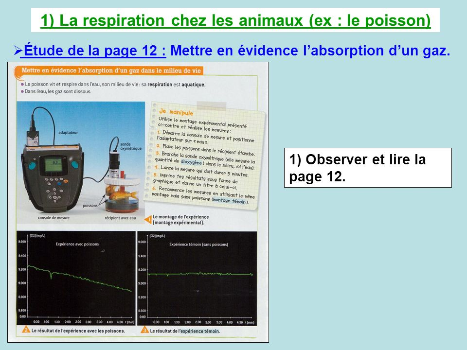 1) La respiration chez les animaux (ex : le poisson) Étude de la page 12 : Mettre en évidence labsorption dun gaz. 1) Observer et lire la page 12.