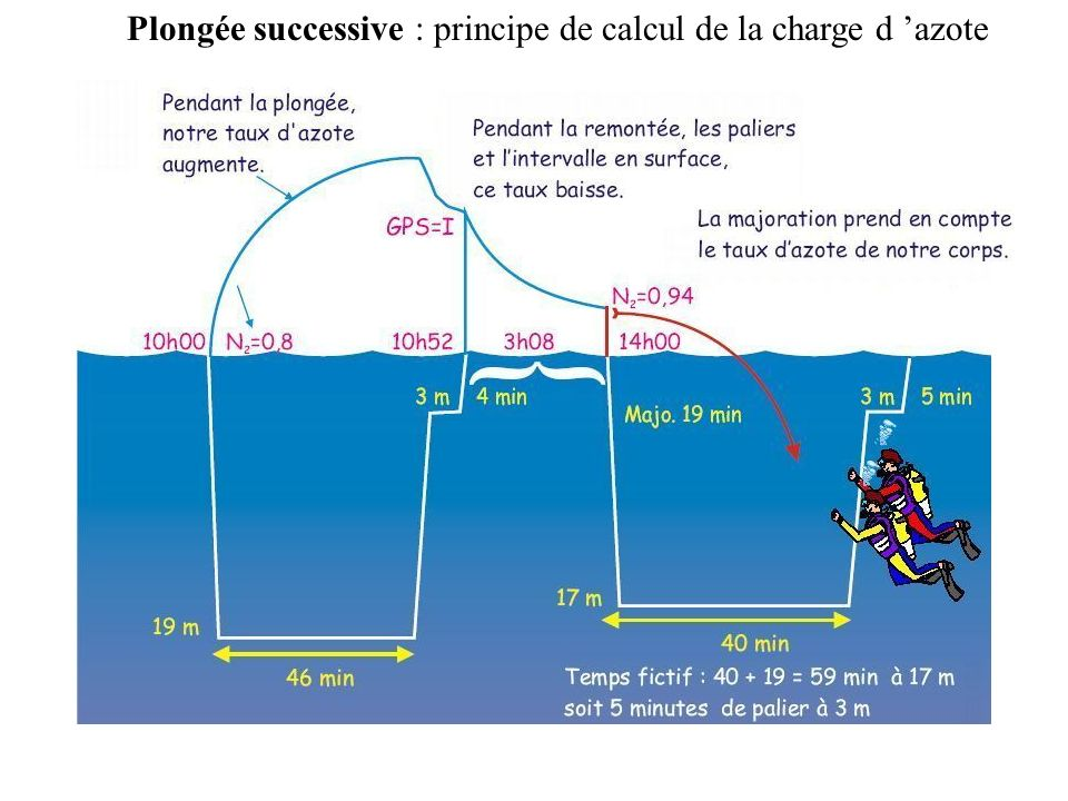 Plongée successive : courbe de décharge d azote Dés notre remontée et retour en surface nous nous déchargeons de l azote excédentaire.