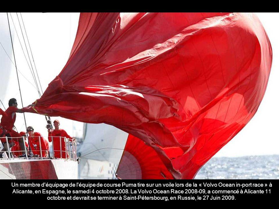 The Maltese Falcon, un yacht-clipper de luxe à voiles détenu par le capital-risque américain Tom Perkins, en baie de San Francisco en Septembre 2008.
