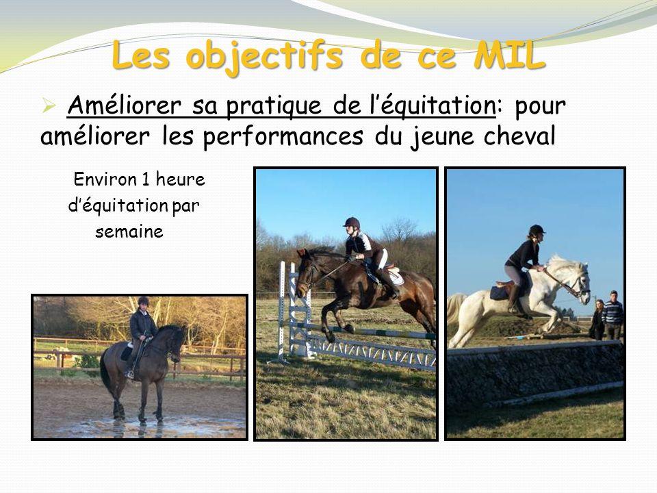 Les objectifs de ce MIL Améliorer sa pratique de léquitation: pour améliorer les performances du jeune cheval Environ 1 heure déquitation par semaine