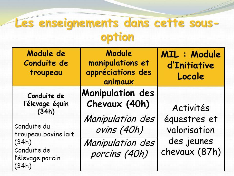 Les enseignements dans cette sous- option Manipulation des porcins (40h) Manipulation des ovins (40h) Activités équestres et valorisation des jeunes c