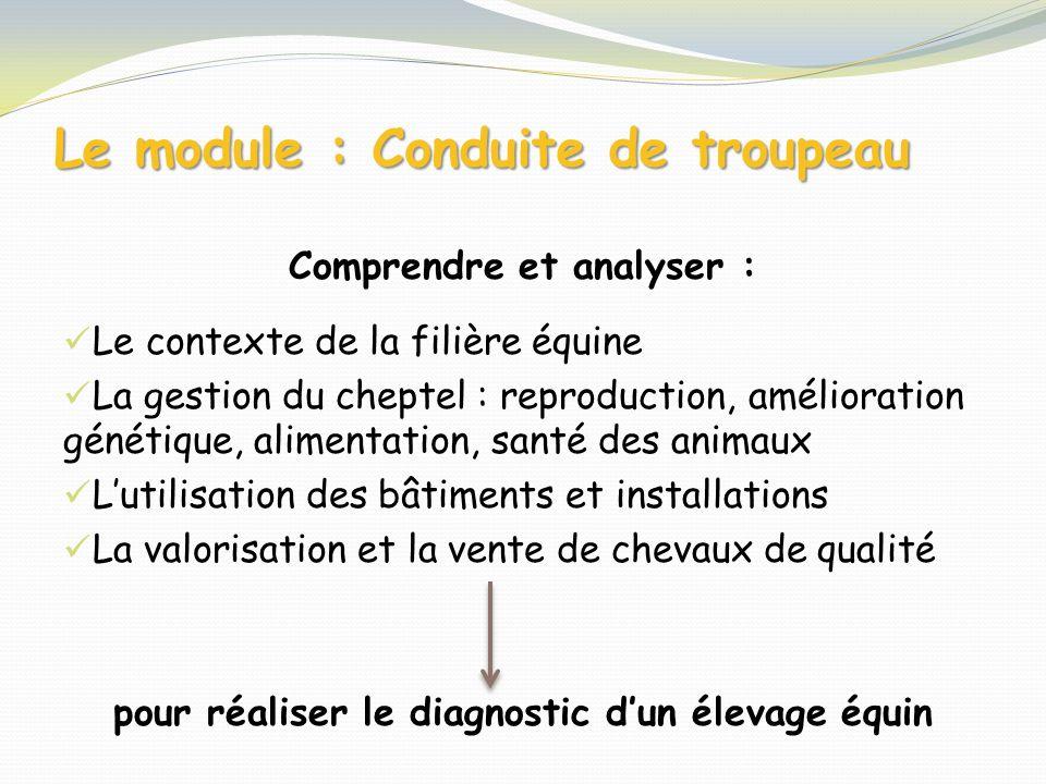 Le module : Conduite de troupeau Comprendre et analyser : Le contexte de la filière équine La gestion du cheptel : reproduction, amélioration génétiqu